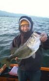 Bass_239
