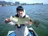 Bass_098