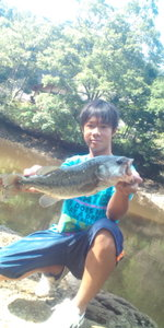 Bass_029