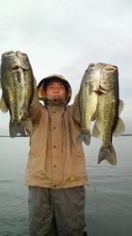 Bass_035