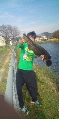 Blog_052_2