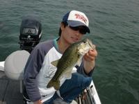 Bass_323