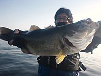 Bass_005