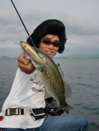 Bass_328