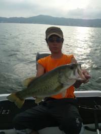 Bass_264