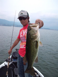Bass_337_r