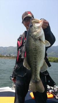 Bass_184_r