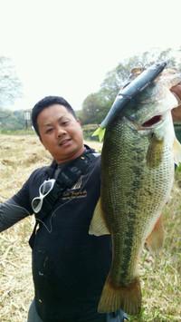 Bass_055