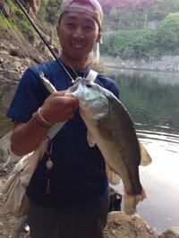 Bass_205