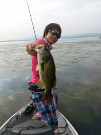Bass_312