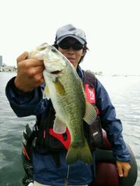 Bass_218