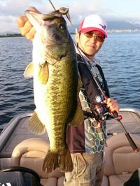 Bass_332