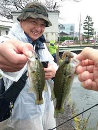 Bass_570