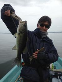 Bass_582