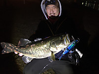 Bass_605