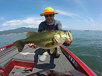 Bass_532