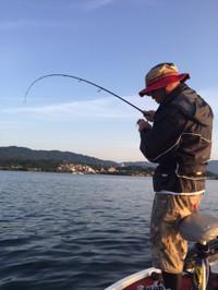 Bass_546
