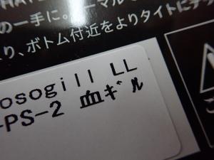 P4192065